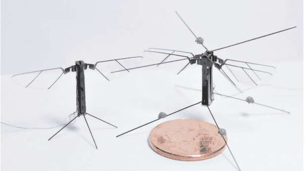 A tiny four-winged robotic insect flies more like the real thing