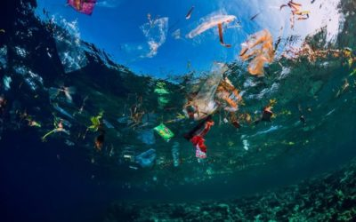 Dell using VMware's blockchain to track recycled plastic